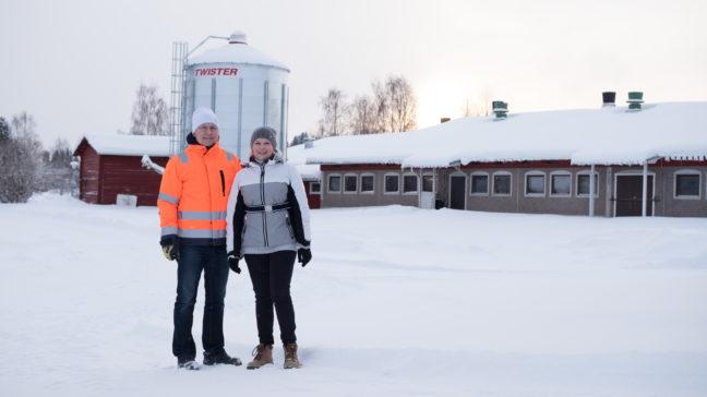 På gård Immonens mjölkgård är man nöjda med Mtech Digital Solutions WebWakka-bokföringsprogrammet.