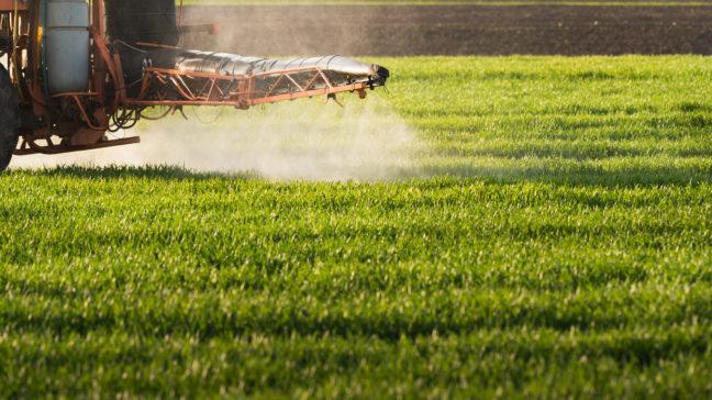 WisuEnnuste on työkalu kasvinsuojelun kustannustehokkaaseen suunnitteluun.