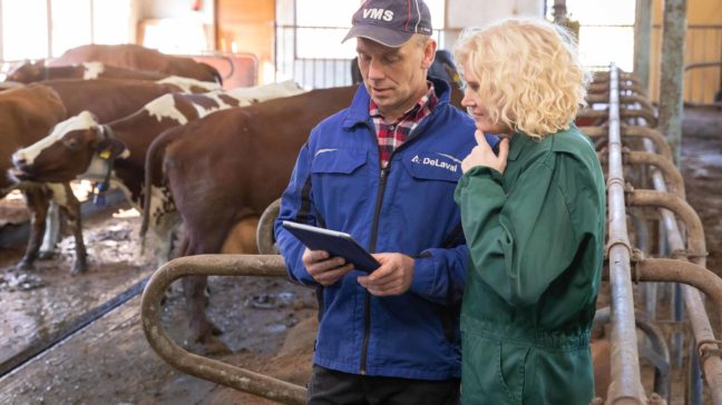 HKScan link ja muokattavat raportit Minun Maatilassani