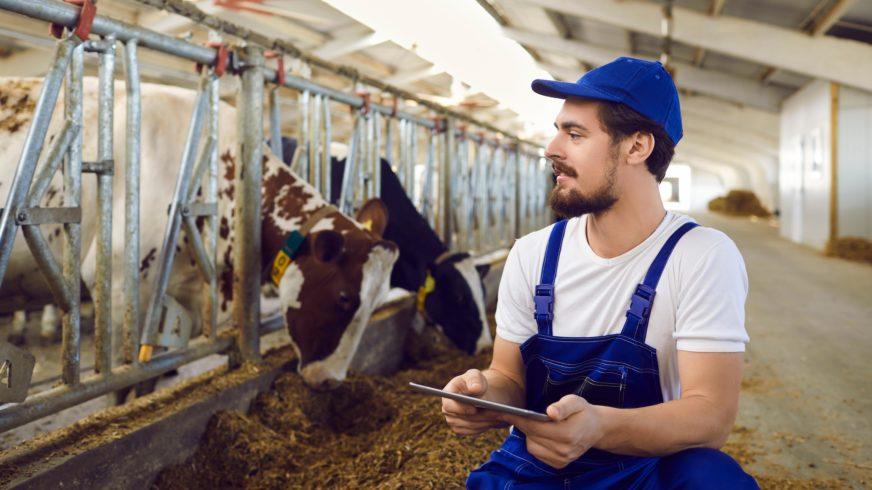 Muokattavat raportit - tehoa eläinten seurantaan